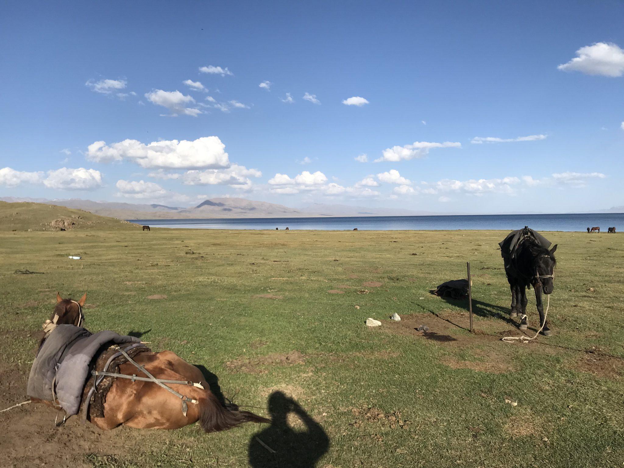 Kirghizistan service de rencontres